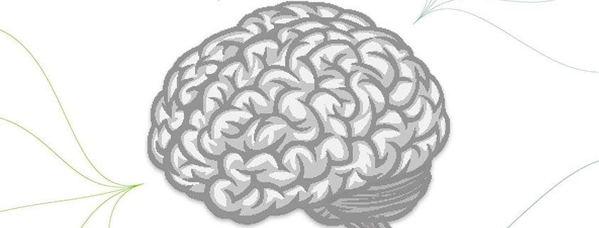 cerveau-biais
